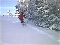 A skier enjoys six inches of new snow on Monday at Snowshoe.